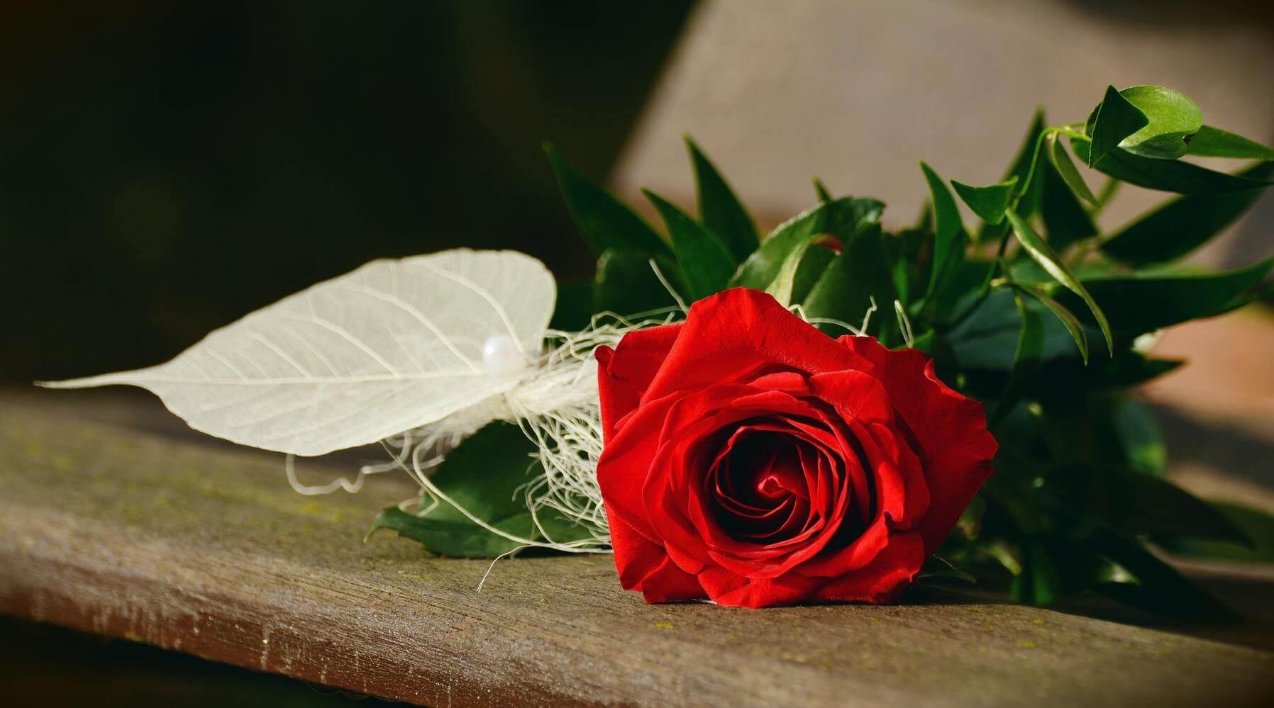 islamic love spells,islamic magic spells, love spells in islam,bring back lost lover,fix all relationship problems